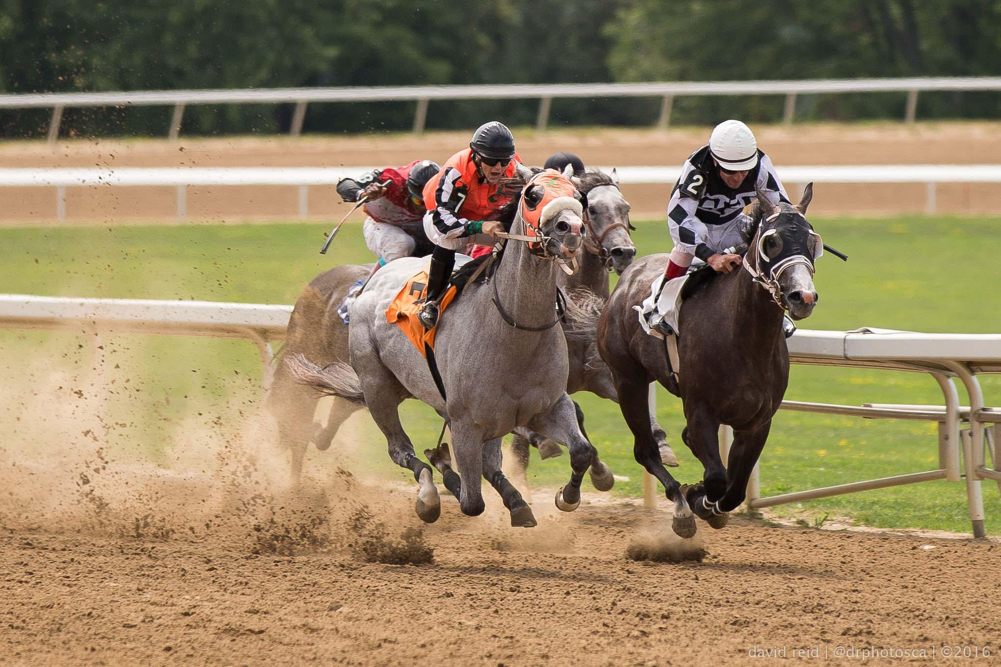 New photos released taken at Ajax Downs of Quarter horse racing