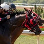Leanintoit Wins Again at Ajax Downs