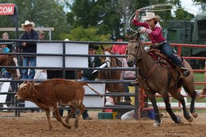 Rodeo photographer David Reid