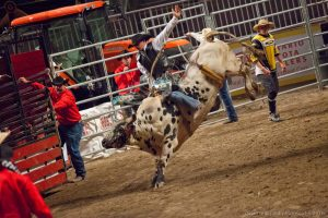 Tips on capturing the best indoor rodeo photos