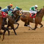 Tips for taking horse racing photos
