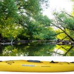 Why I think the best kayak for wildlife photography is the Current Designs Solara 120